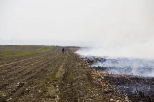 Ne spaljujte organske ostatke jer degradirate kvalitet i funkciju zemljišta na duži vremenski rok